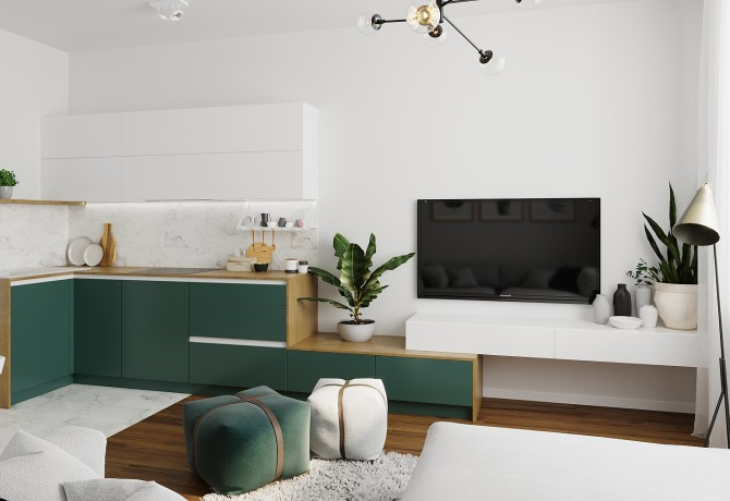 Small apartment reconstruction